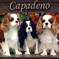 Capadeno