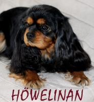 howelina