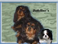 jadelines_200x150