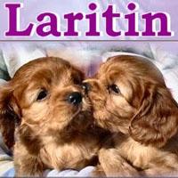 laritin
